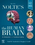 Nolte's The Human Brain, 8th Edition