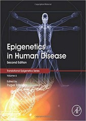 Epigenetics in Human Disease, Volume 6, 2/e
