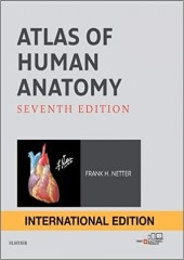Atlas of Human Anatomy, 7/e (International Edition)